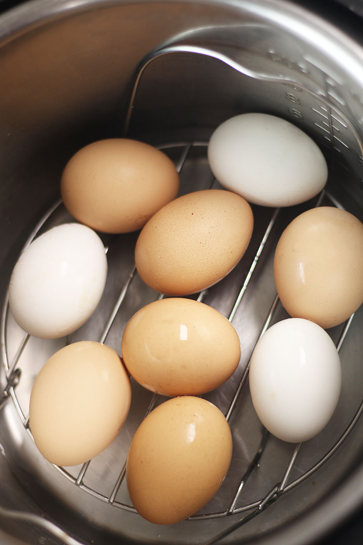 Fresh eggs in Instant Pot for Instant Pot hard boiled eggs